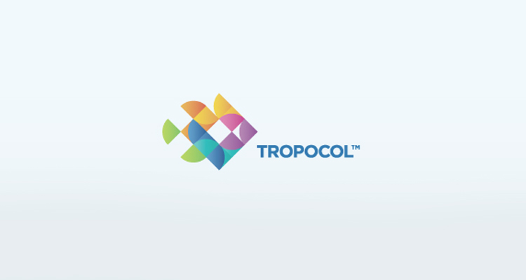 11-full-color-logo-design